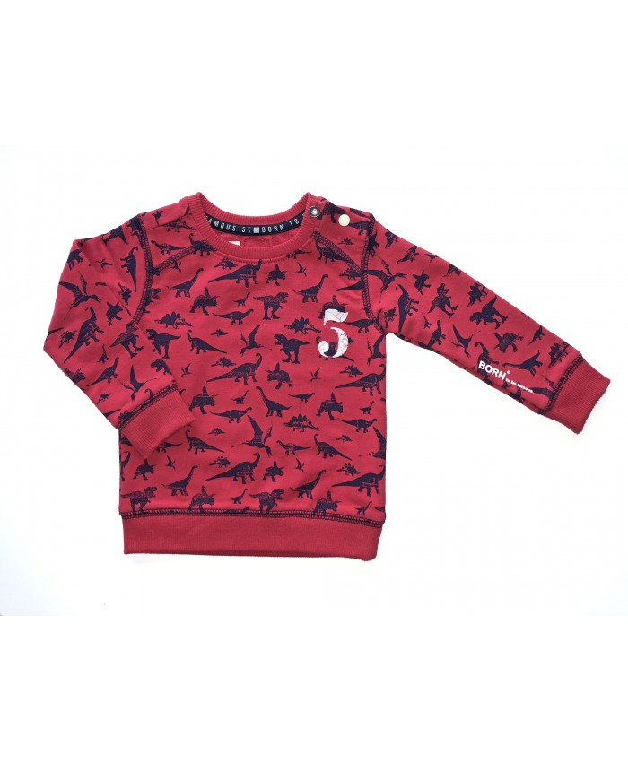 Born To Be Famous sweater red