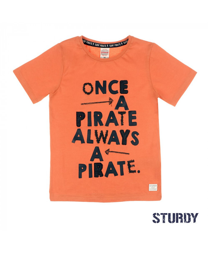 Sturdy TShirt Once A Pirate  Treasure Hunter
